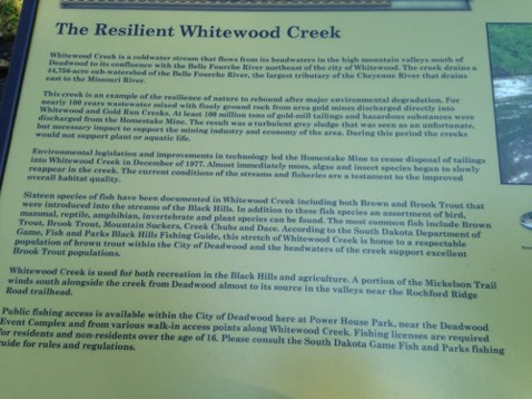 Signage for the creek
